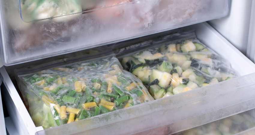 freezer bags vs food storage bags