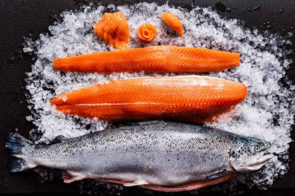sockeye and keta salmon